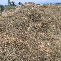 Biomüll für Biogasanlage